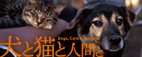犬と猫と人間と 公式サイト